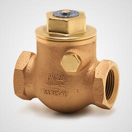 BRONZE SWING CHECK VALVE 1060A 10638 Pegler